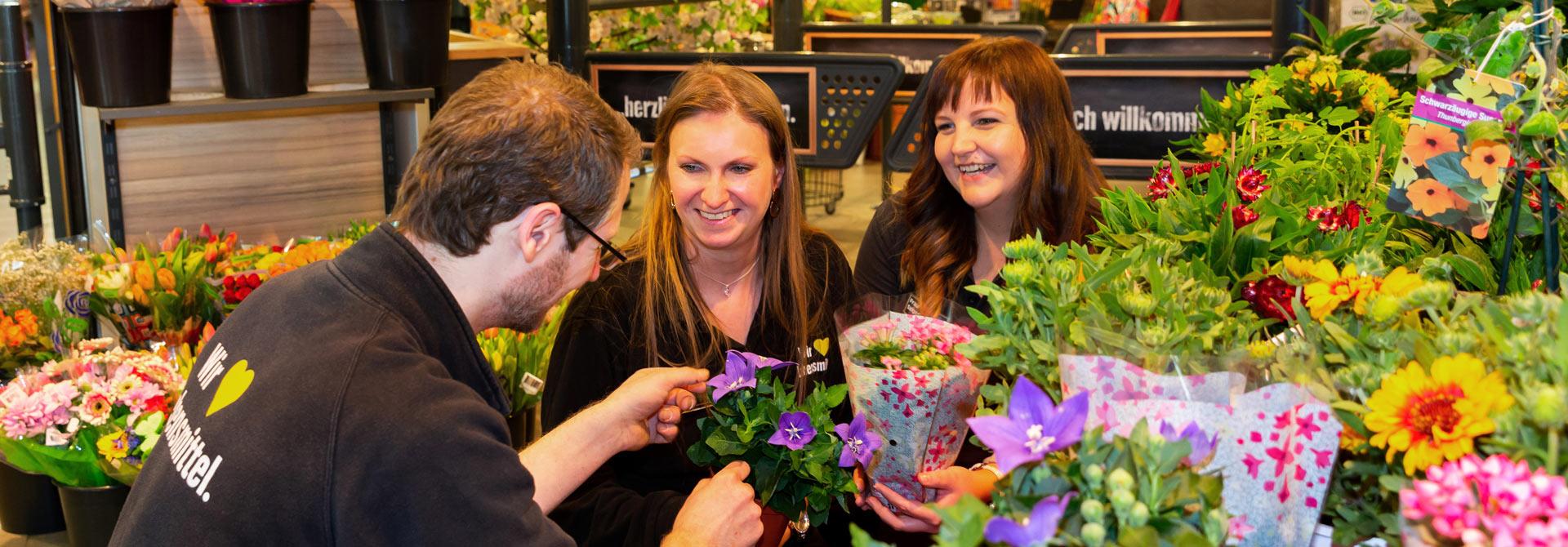 Floristik-Abteilung im EDEKA Häfner